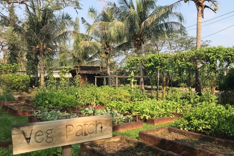 Farm-to-table: Akaryn Hotel Group launches a culinary series with sustainable and experiential dining