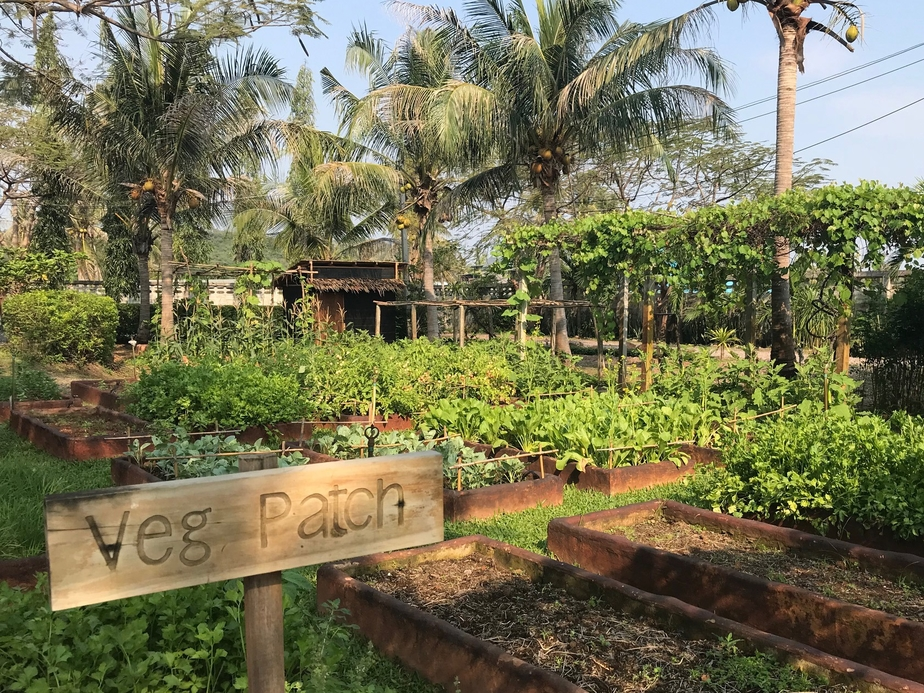 Akaryn Hotel Group, Culinary Series, Sustainability, Responsible dining, Farm to table, Dining experience, Aleenta Hua Hin-Pranburi Resort & Spa, Thailand