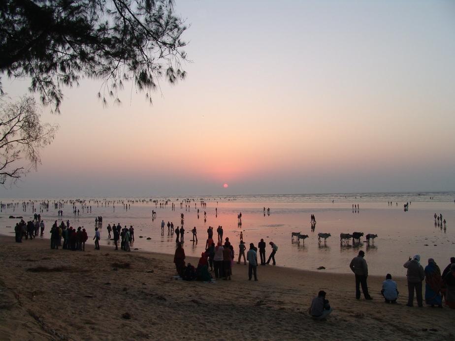 Odisha, Special day tour packages, Satkosia, Bhitarakanika, Travel tourism, The Odisha Tourism Development Corporation (OTDC), Visitors, Tourists