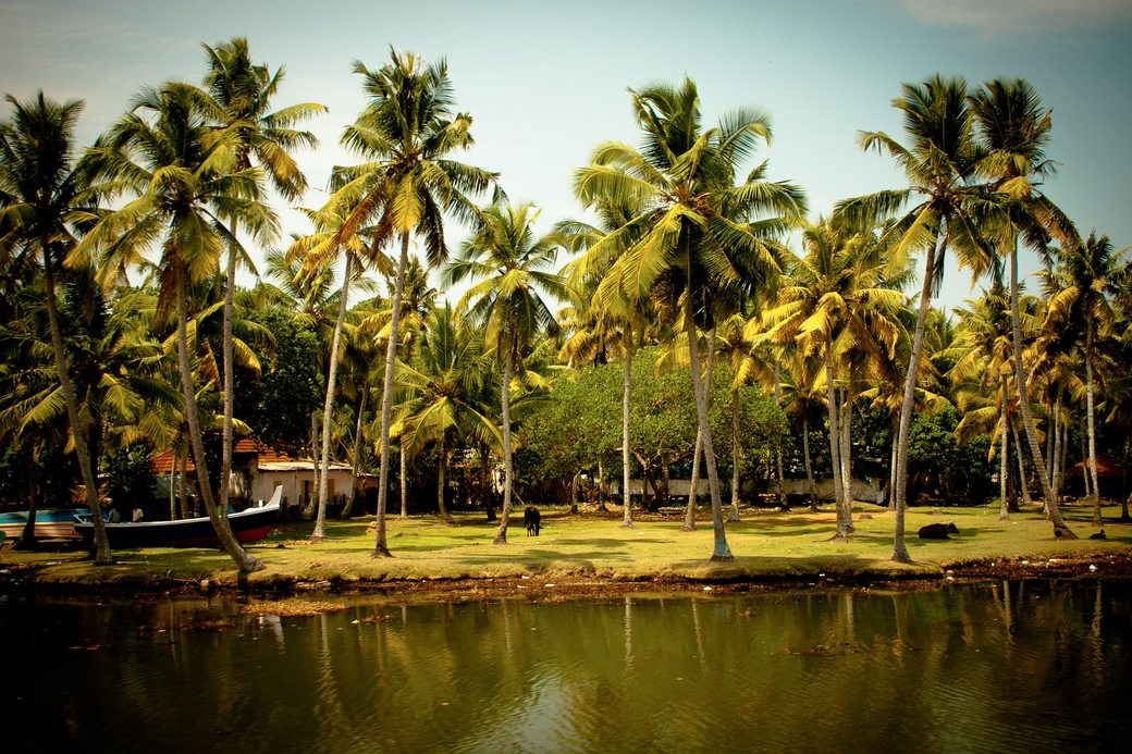Kerala, Most welcoming places, Tourist spots, Mararikulam, Varkala, Thekkady, Kollam, Top 10 list, Goa, Agonda, Palolem