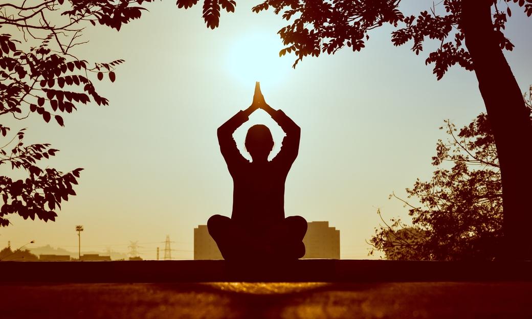 Ministry of tourism, Dekho Apna Desh webinar, Yoga and Wellness session, International Yoga Day